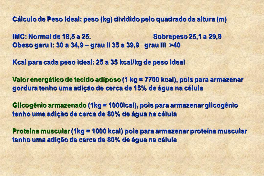 Cálculo de Peso ideal: peso (kg) dividido pelo quadrado da altura (m)