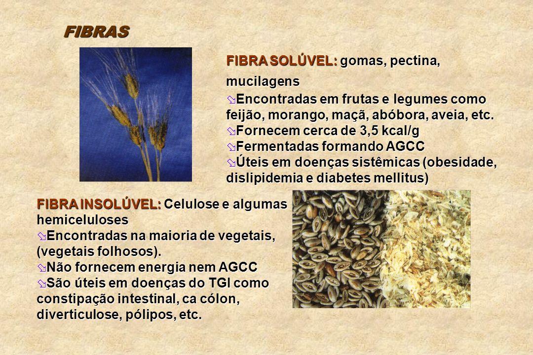 FIBRAS FIBRA SOLÚVEL: gomas, pectina, mucilagens