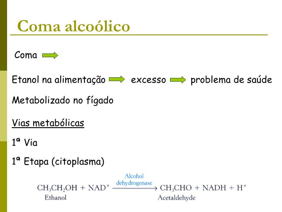 Coma alcoólico Coma Etanol na alimentação excesso problema de saúde