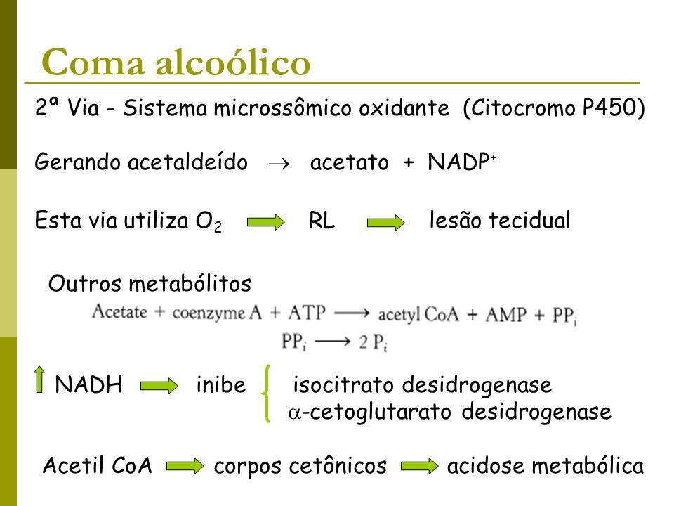 Coma alcoólico 2ª Via - Sistema microssômico oxidante (Citocromo P450)
