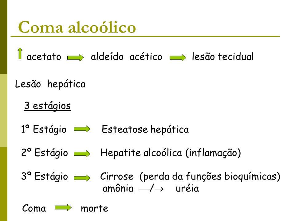 Coma alcoólico acetato aldeído acético lesão tecidual Lesão hepática