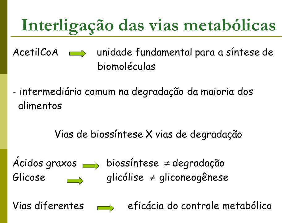 Interligação das vias metabólicas