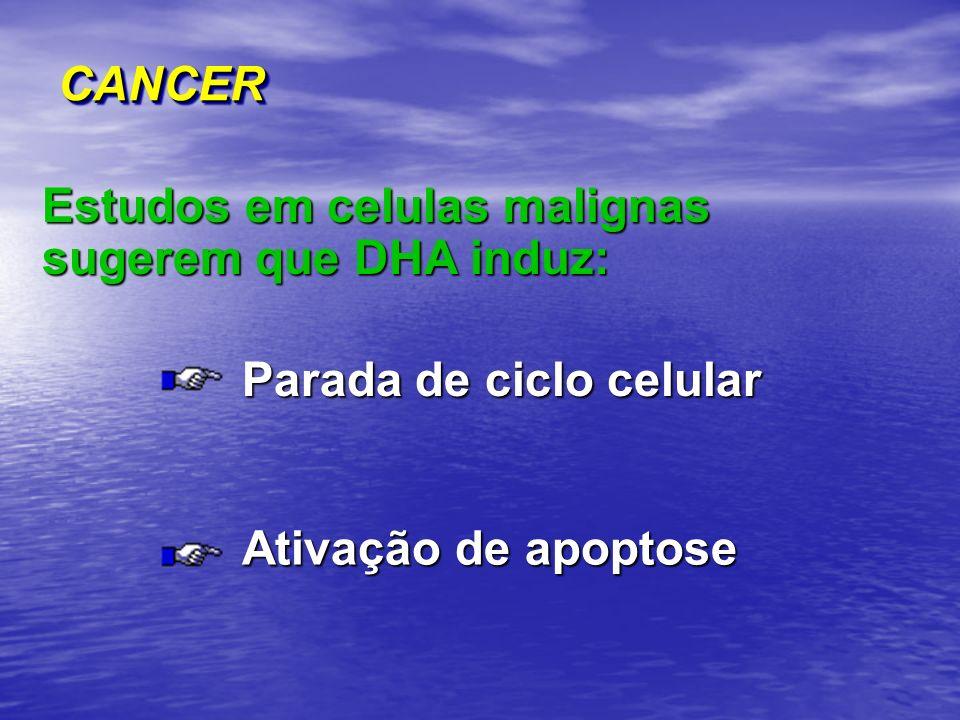 CANCER Estudos em celulas malignas sugerem que DHA induz: Parada de ciclo celular.
