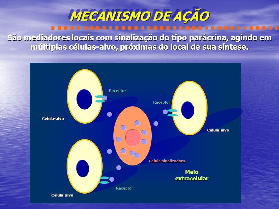 MECANISMO DE AÇÃO São mediadores locais com sinalização do tipo parácrina, agindo em múltiplas células-alvo, próximas do local de sua síntese.