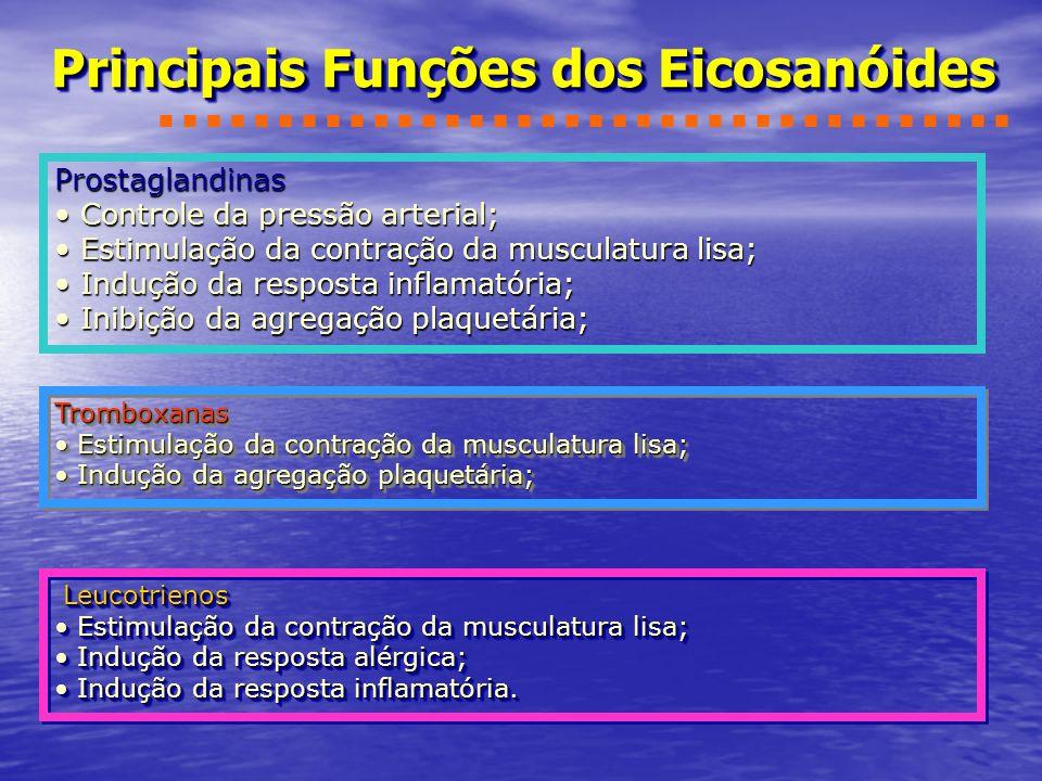 Principais Funções dos Eicosanóides