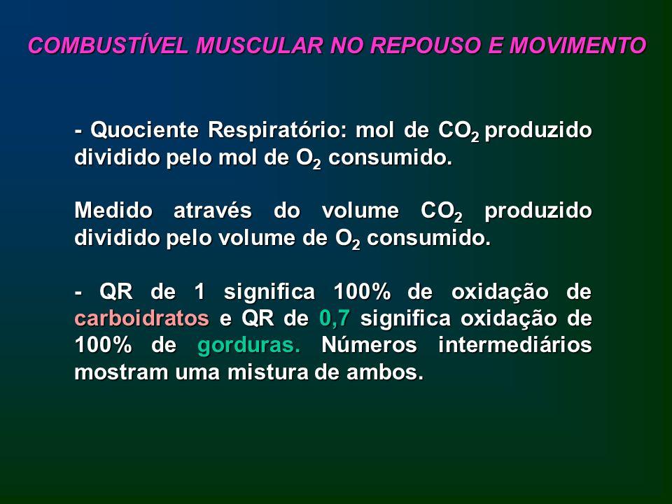 COMBUSTÍVEL MUSCULAR NO REPOUSO E MOVIMENTO