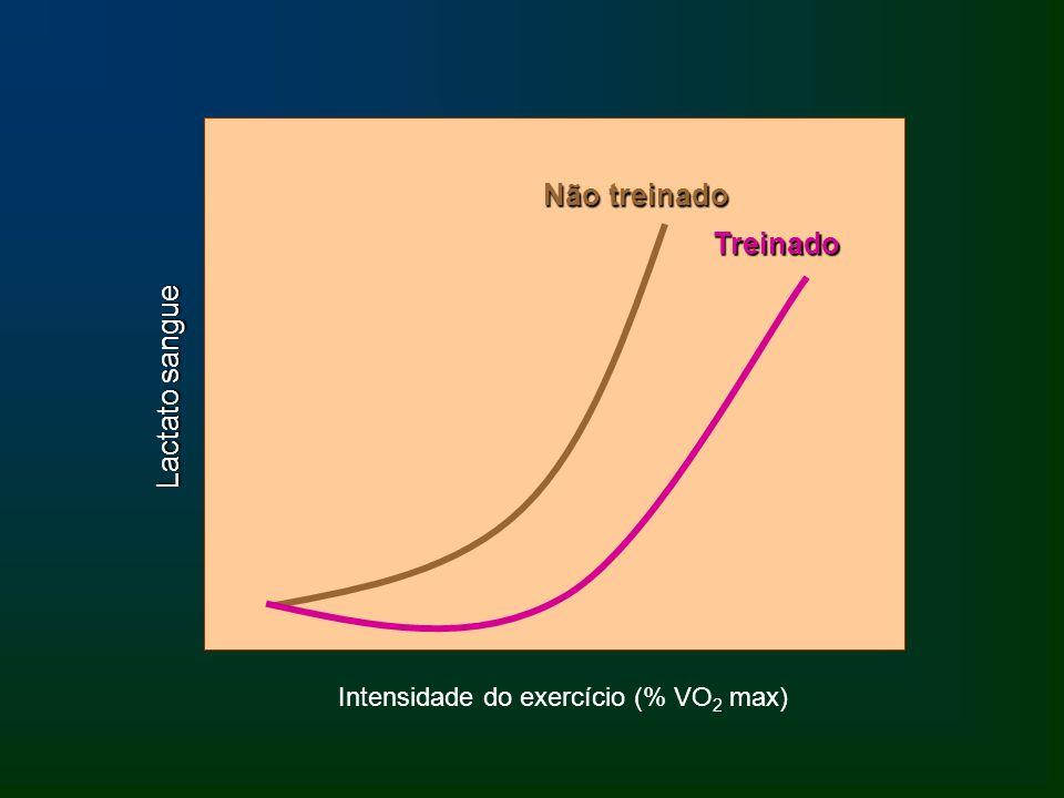 Intensidade do exercício (% VO2 max)