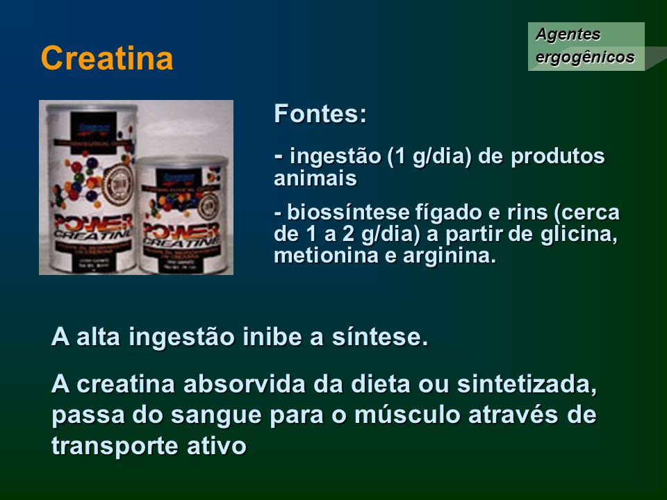 Creatina Fontes: - ingestão (1 g/dia) de produtos animais