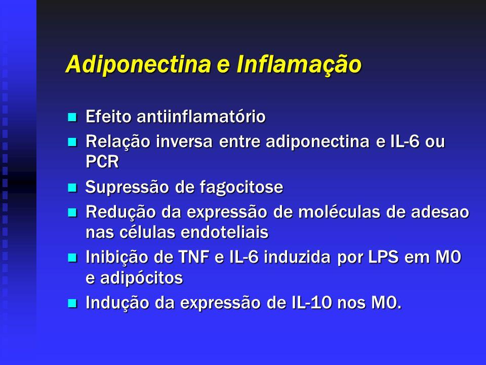 Adiponectina e Inflamação