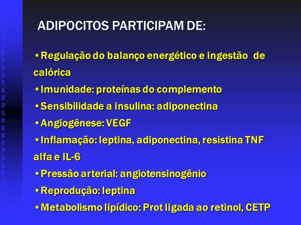 ADIPOCITOS PARTICIPAM DE: