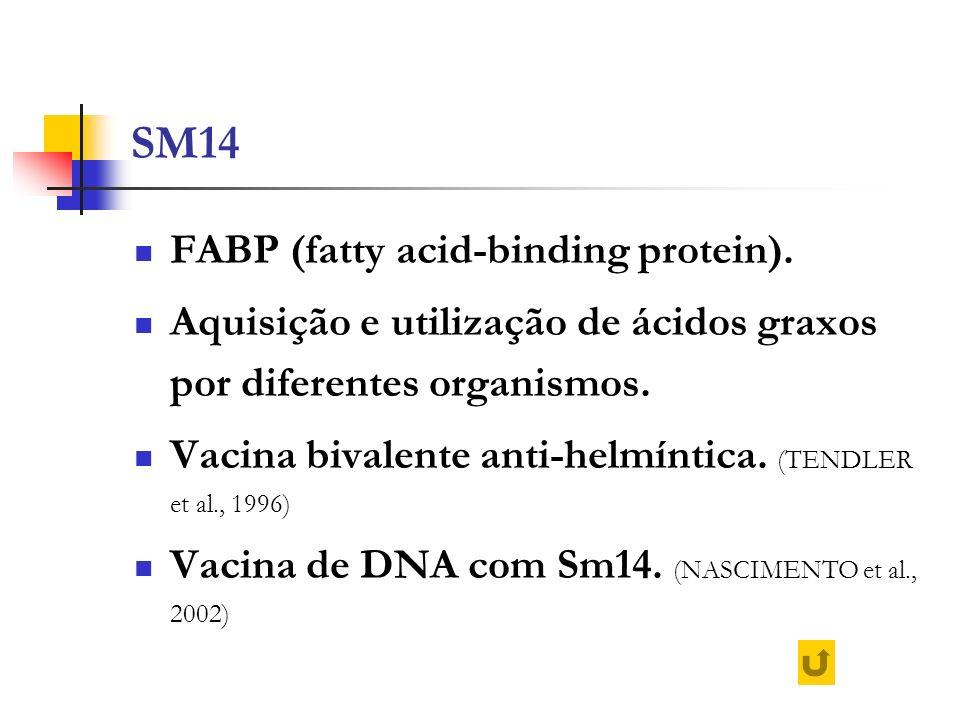 SM14 FABP (fatty acid-binding protein).