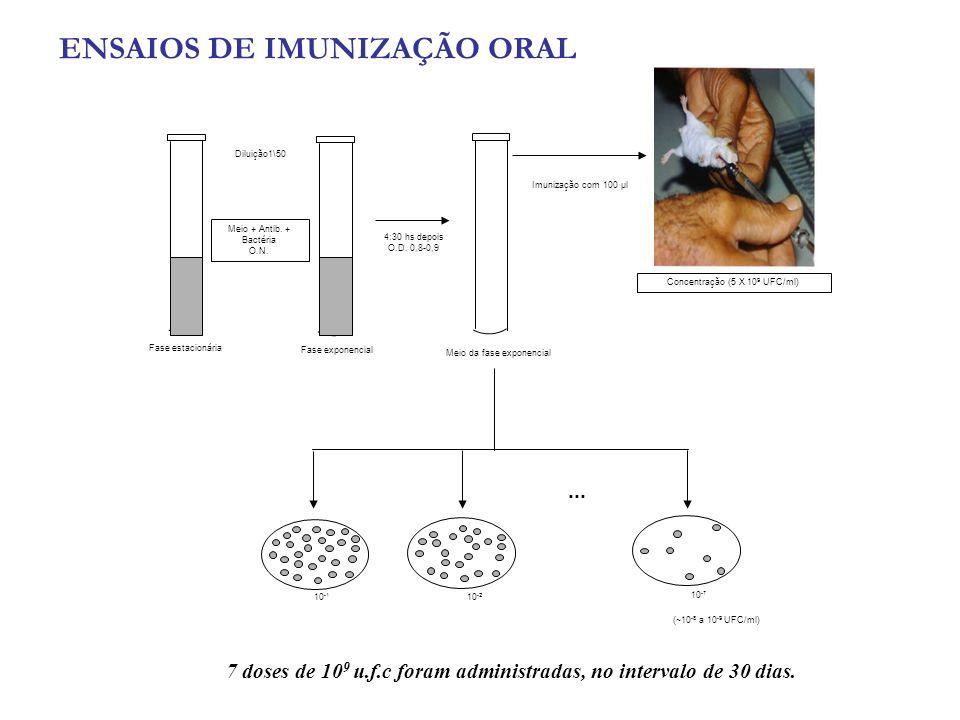 ENSAIOS DE IMUNIZAÇÃO ORAL