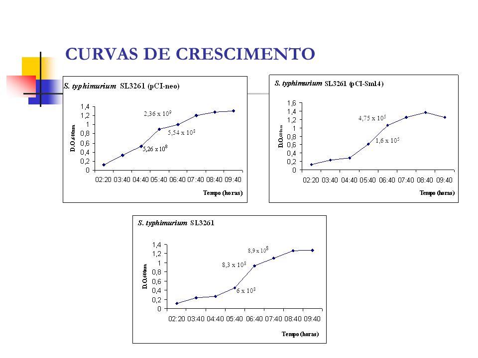 CURVAS DE CRESCIMENTO 2,36 x 109 4,75 x 105 5,54 x 108 1,6 x 105