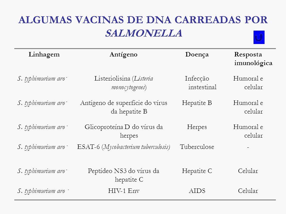 ALGUMAS VACINAS DE DNA CARREADAS POR SALMONELLA