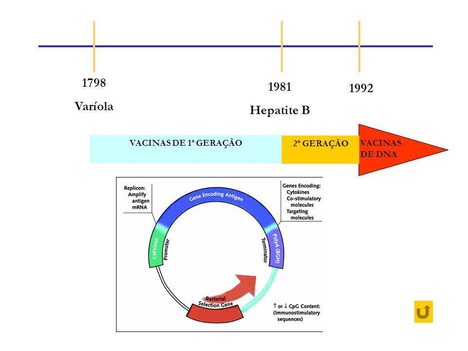 1798 1981 1992 Varíola Hepatite B VACINAS DE 1ª GERAÇÃO 2ª GERAÇÃO