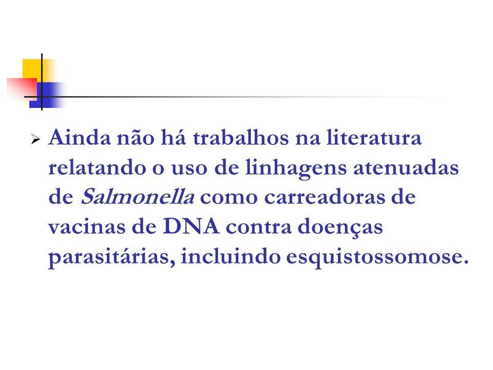 Ainda não há trabalhos na literatura relatando o uso de linhagens atenuadas de Salmonella como carreadoras de vacinas de DNA contra doenças parasitárias, incluindo esquistossomose.