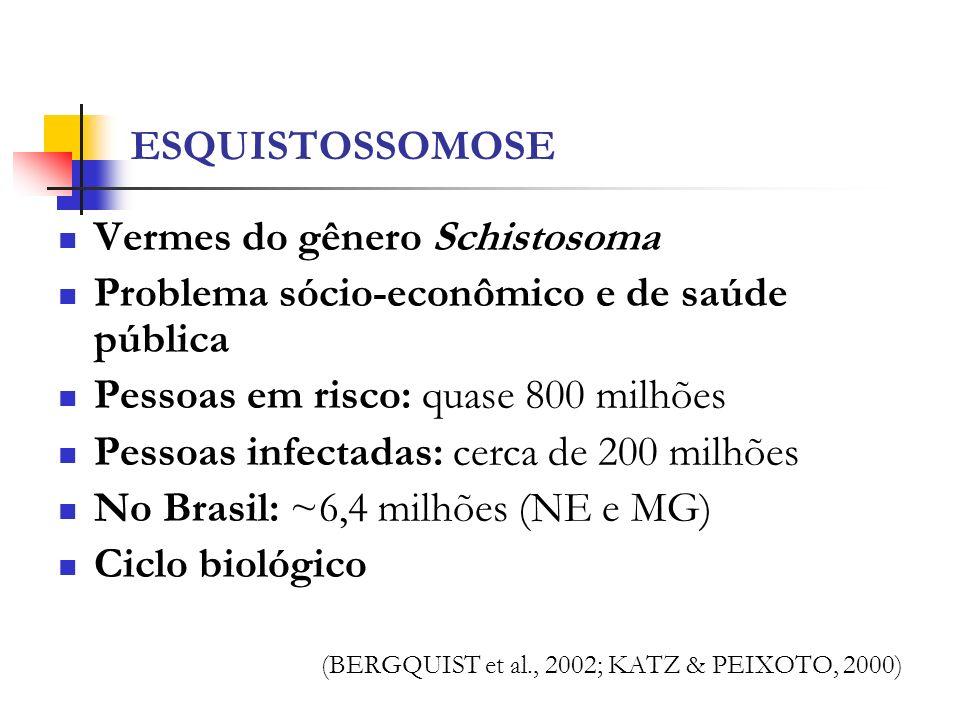 Vermes do gênero Schistosoma