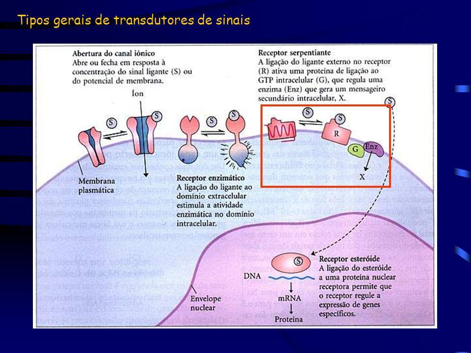 Tipos gerais de transdutores de sinais