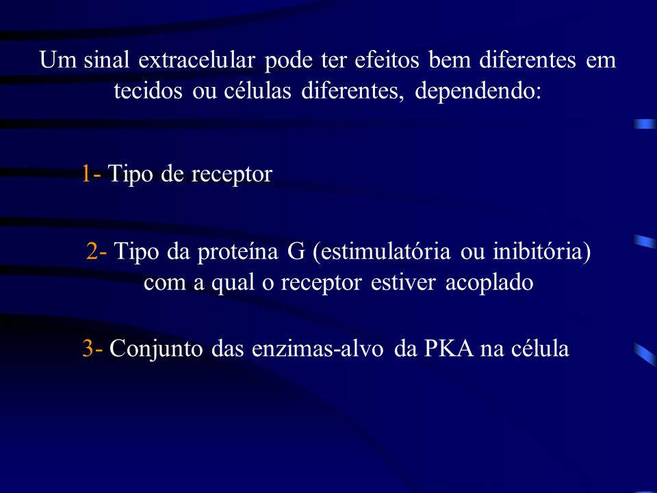 3- Conjunto das enzimas-alvo da PKA na célula