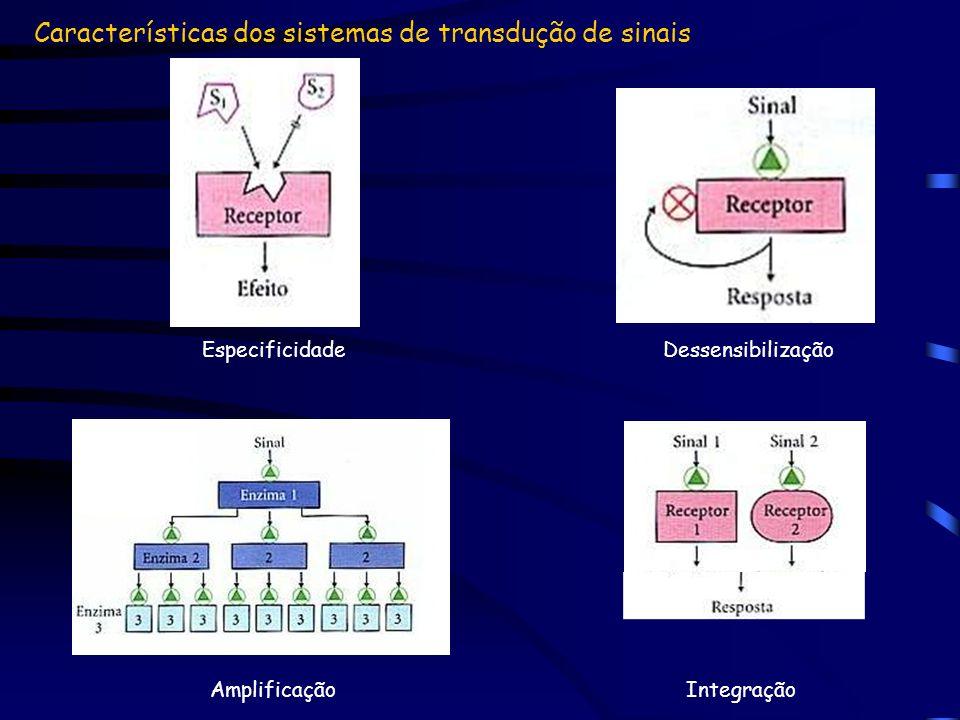 Características dos sistemas de transdução de sinais