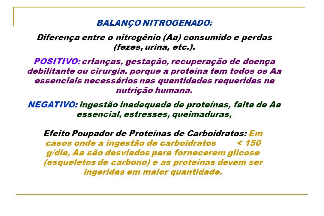 BALANÇO NITROGENADO: Diferença entre o nitrogênio (Aa) consumido e perdas (fezes, urina, etc.).