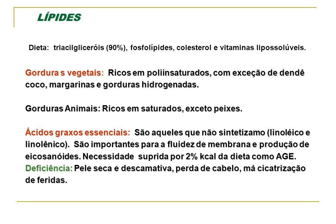 LÍPIDES Dieta: triacilgliceróis (90%), fosfolípides, colesterol e vitaminas lipossolúveis.