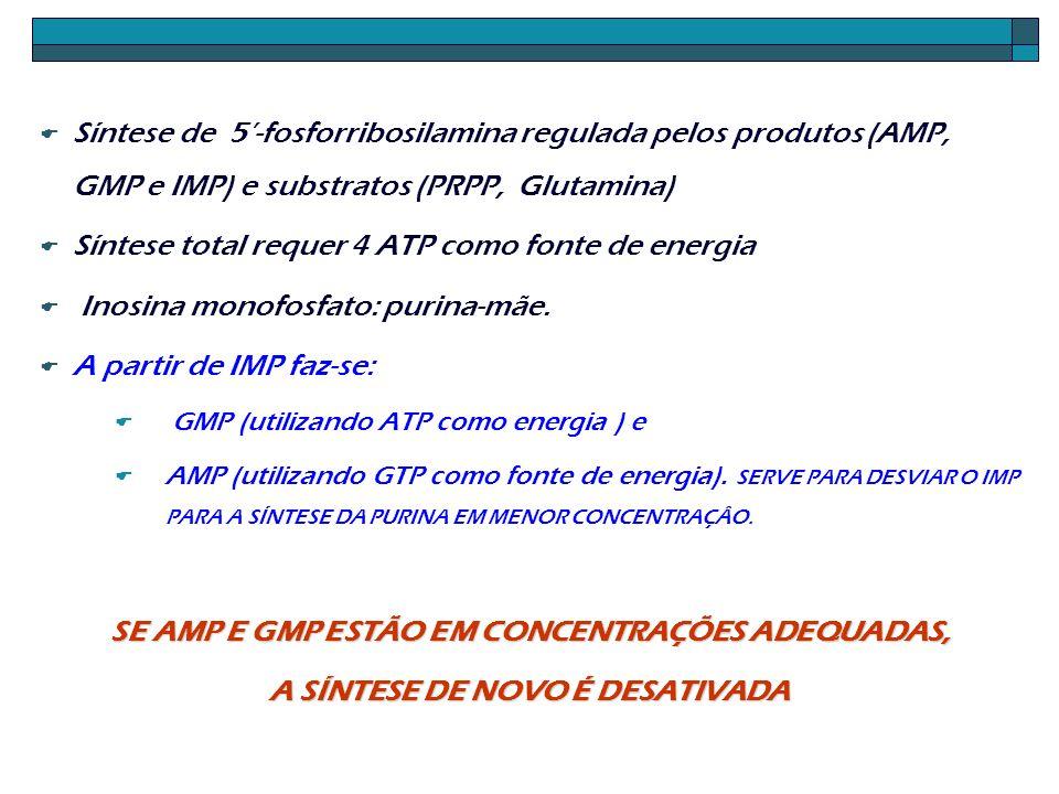 Síntese total requer 4 ATP como fonte de energia