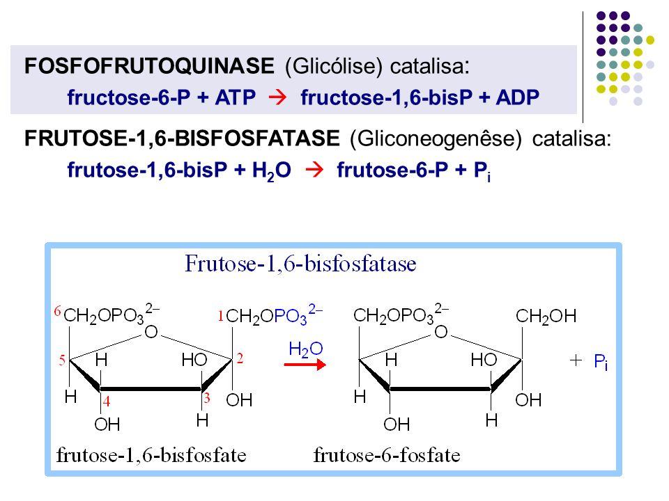 FOSFOFRUTOQUINASE (Glicólise) catalisa: