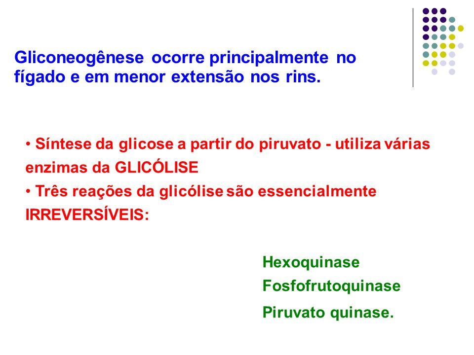 Gliconeogênese ocorre principalmente no fígado e em menor extensão nos rins.