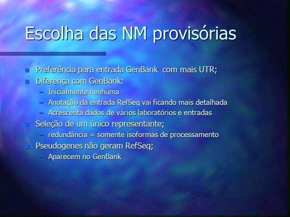 Escolha das NM provisórias