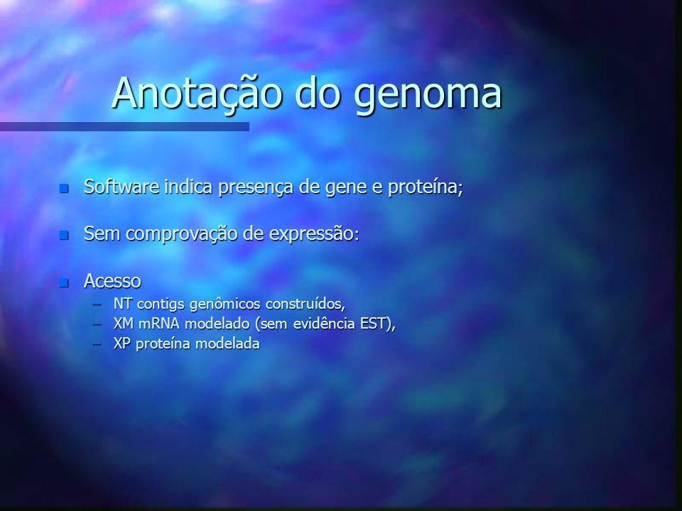 Anotação do genoma Software indica presença de gene e proteína;