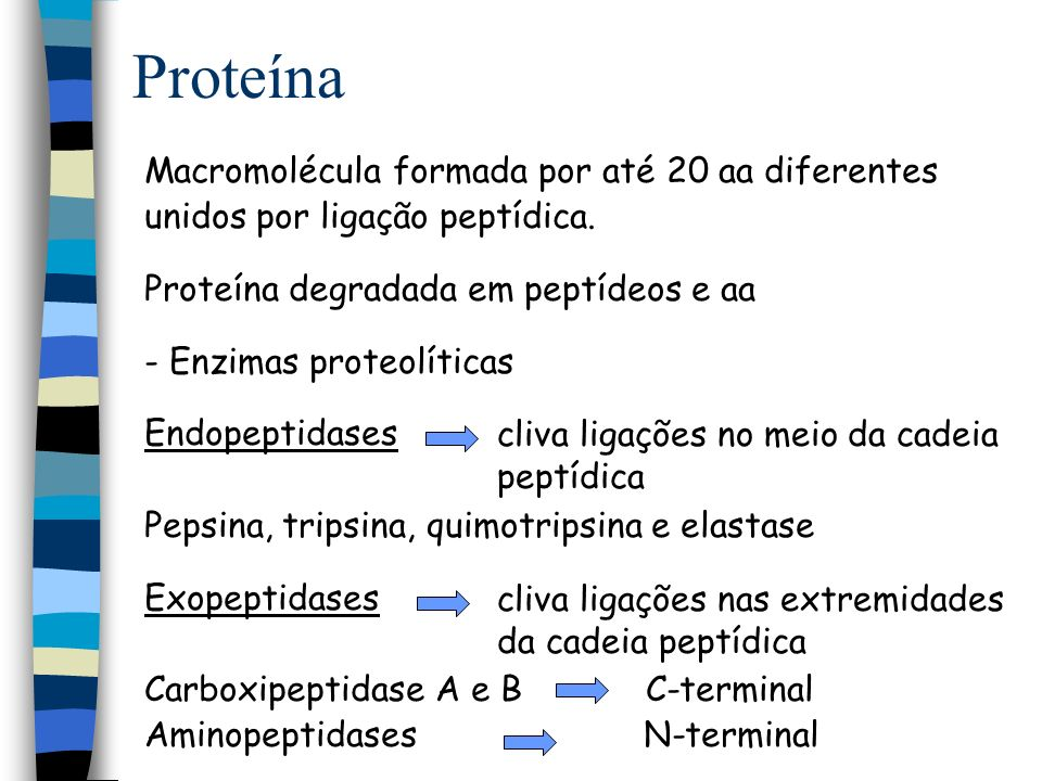 Proteína Macromolécula formada por até 20 aa diferentes