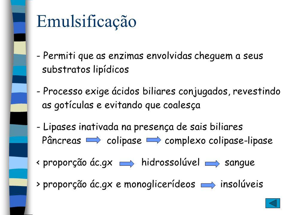 Emulsificação - Permiti que as enzimas envolvidas cheguem a seus