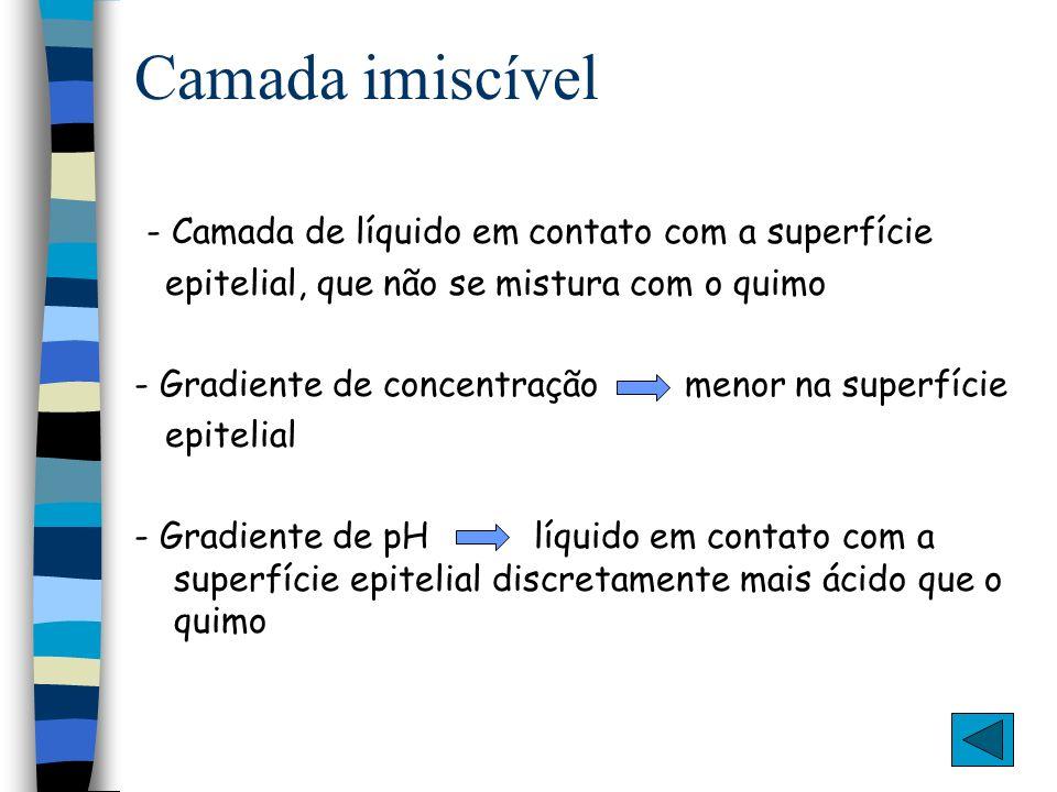 Camada imiscível - Camada de líquido em contato com a superfície