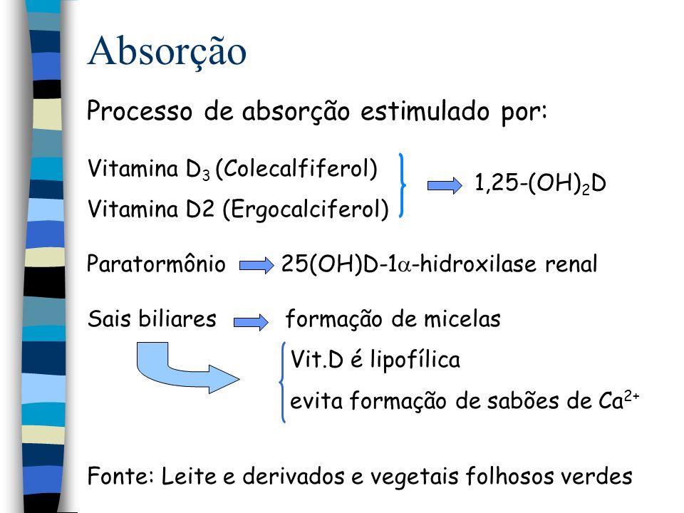 Absorção Processo de absorção estimulado por:
