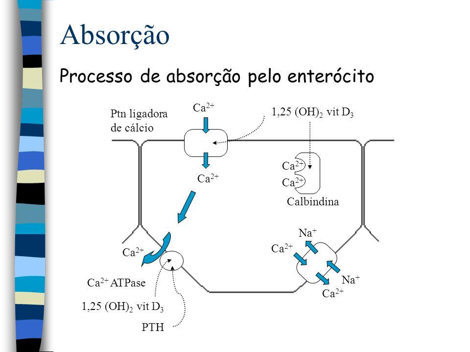 Absorção Processo de absorção pelo enterócito Ca2+