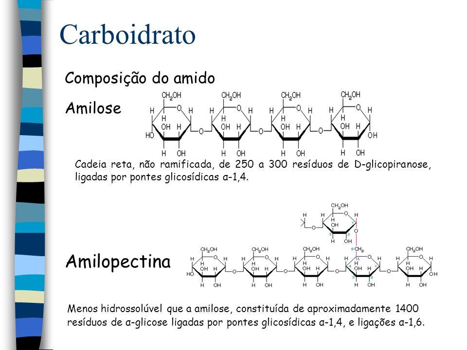 Carboidrato Amilopectina Composição do amido Amilose