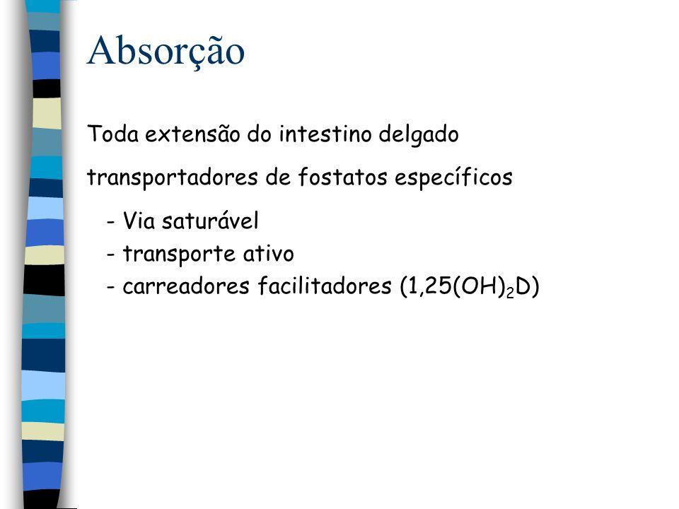 Absorção Toda extensão do intestino delgado