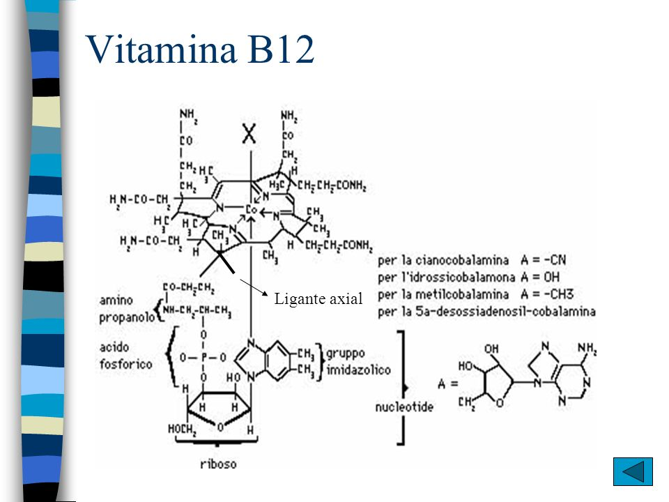 Vitamina B12 Ligante axial