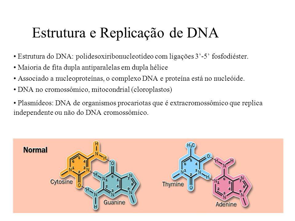 Estrutura e Replicação de DNA