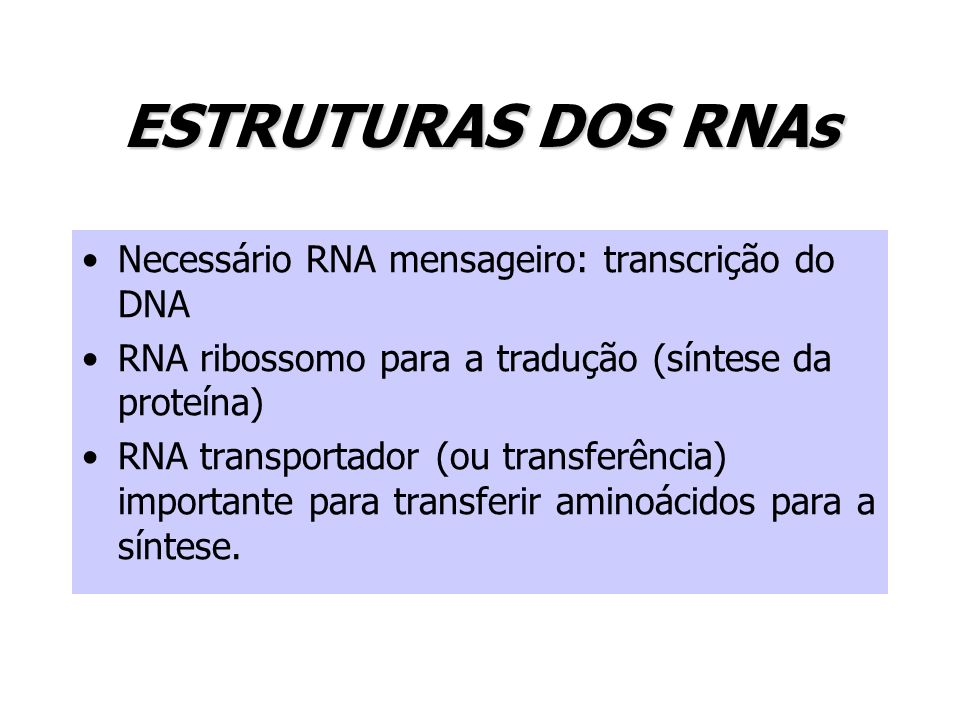 ESTRUTURAS DOS RNAs Necessário RNA mensageiro: transcrição do DNA