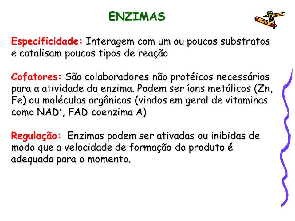 ENZIMAS Especificidade: Interagem com um ou poucos substratos e catalisam poucos tipos de reação.