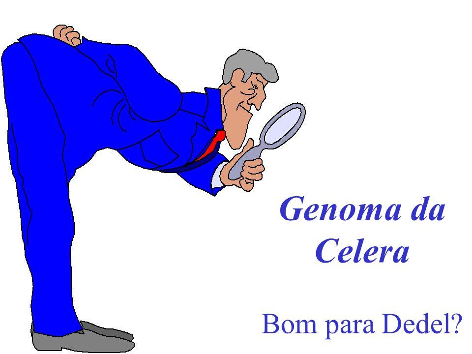 Genoma da Celera Bom para Dedel