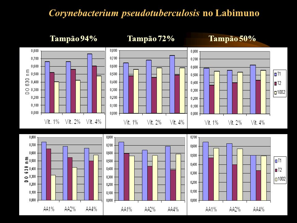 Corynebacterium pseudotuberculosis no Labimuno