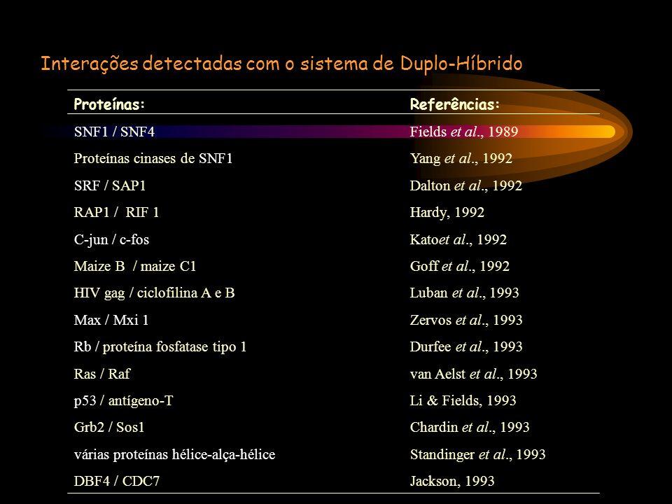Interações detectadas com o sistema de Duplo-Híbrido