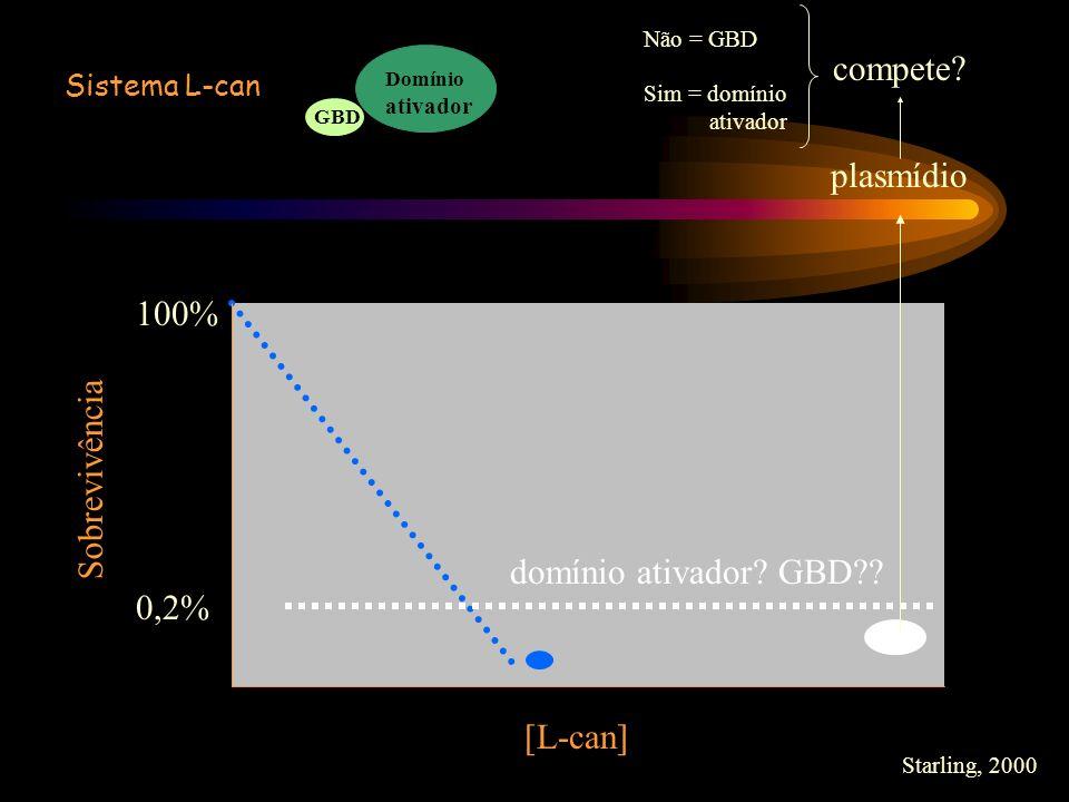 compete plasmídio 100% Sobrevivência domínio ativador GBD 0,2%