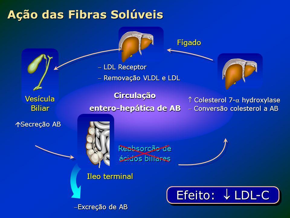 Ação das Fibras Solúveis
