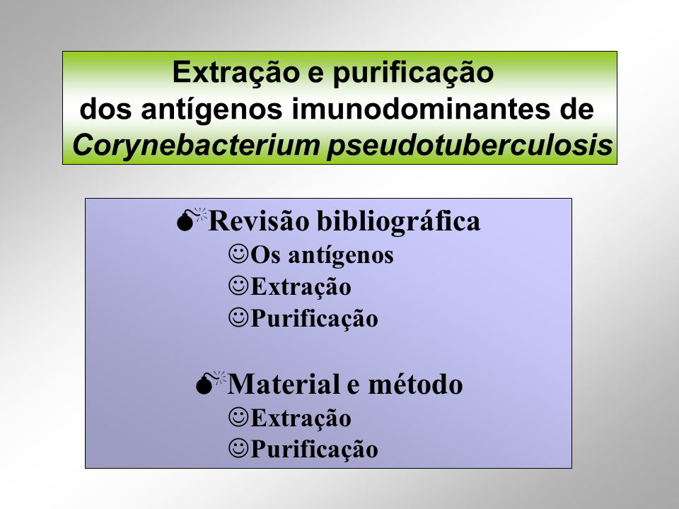 Extração e purificação dos antígenos imunodominantes de