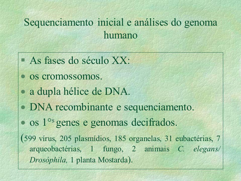 Sequenciamento inicial e análises do genoma humano