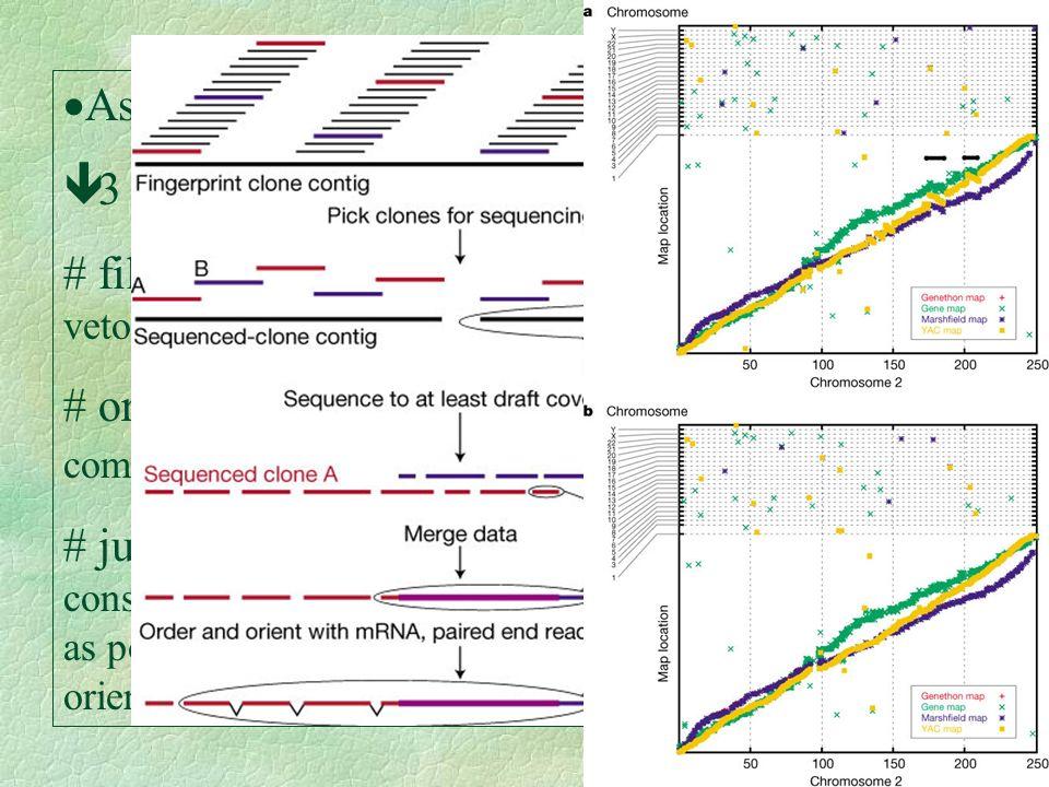 Assembry: 3 passos: filtrar: elimina sequências não humanas, vetor(BAC), etc.